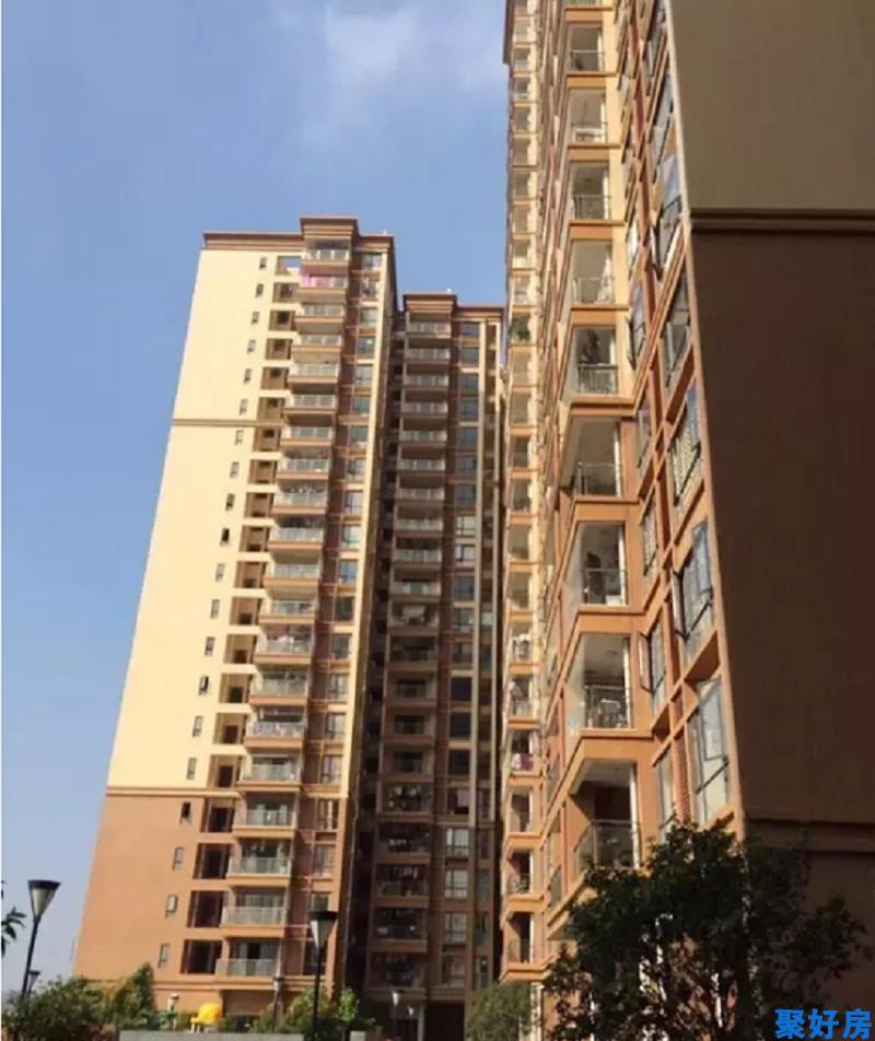 光明8栋26层花园村委房【景田花园】均价17000元/㎡