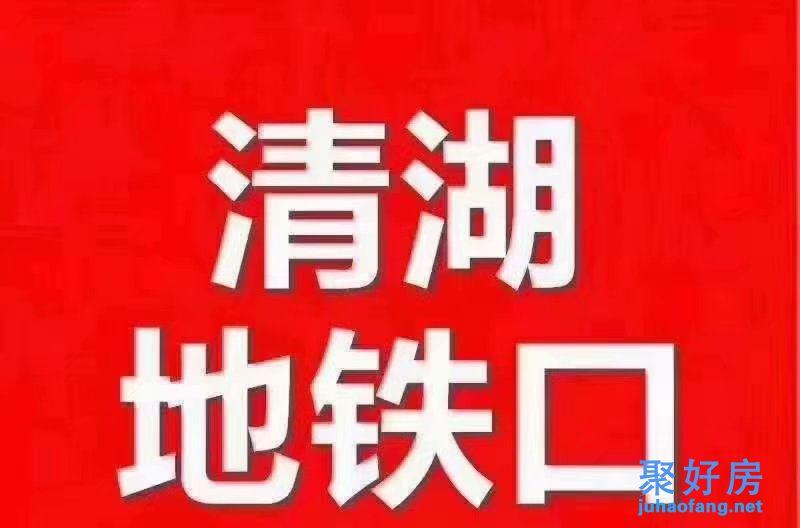 龙华清湖双地铁口【清湖豪苑】精装现房大阳台,首付21.8万起/套