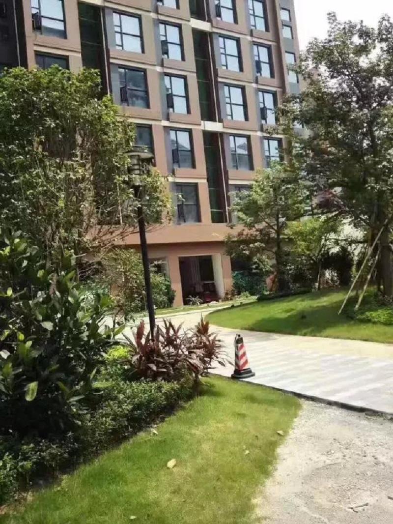 东莞长安性价比不错的小产权房楼盘有推荐吗?